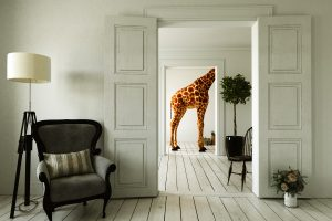 Giraffe dans bureau