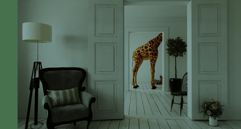 Une giraffe dans un bureau pour illustrer que nul n'est inemployable